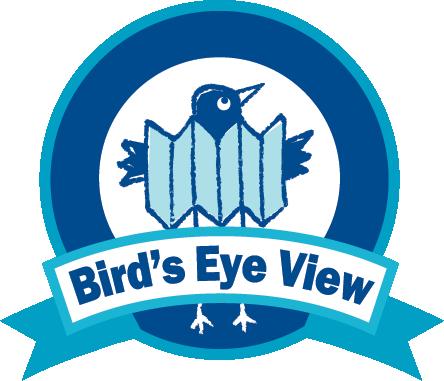 Bird's Eye View Maps